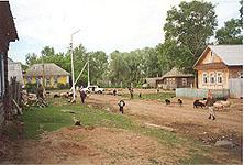 Село Старый Куклюк