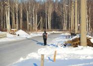 Дети в школу вынуждены ходить по лесной дороге