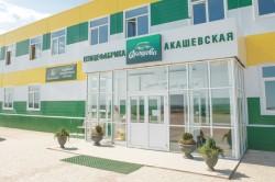 Akashevskaja