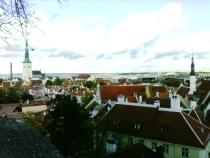 Вид Таллинна